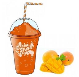 Mango Orange Slush 99% Fruit