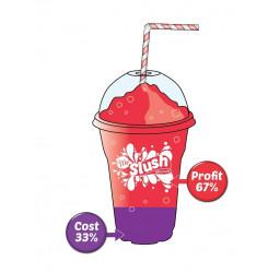 Mr Slush 99% Fruit Slush Syrup